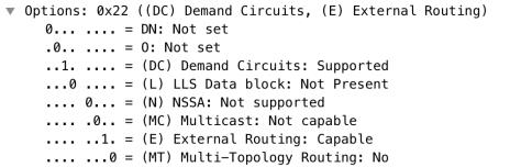 OSPF, vrf, wireshar